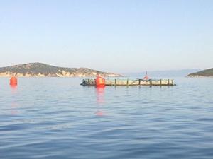 Balıkesir'deki balık çiftlikleri için ÇED Raporu kararı çıktı