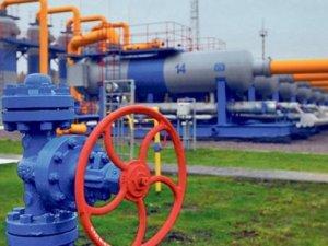 BOTAŞ, doğalgaz fiyatında dolar kurunu sabitliyor
