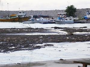Selde kumla dolan balıkçı barınağı temizlenecek