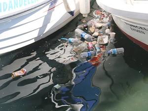 Sinop Belediyesi, denize çöp atanları uyardı