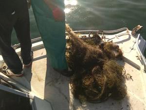 Eğirdir Gölü'nde 800 metrelik balık ağı ele geçirildi