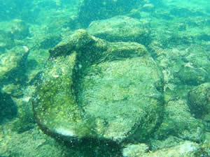Van Gölü'nde yaşam belirtileri araştırılıyor