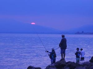İznik Gölü'nde balık tutmak için yarıştılar