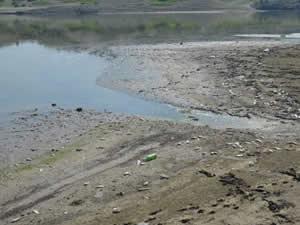 Denizli'de baraj gölünde toplu balık ölümleri görüldü