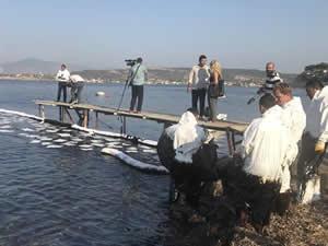 Foça'da petrol sızıntısını temizleme çalışmaları yeniden başladı