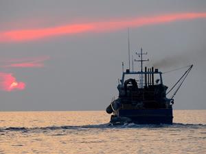 Çanakkale ve Balıkesir'de balıkçılar ağlarını bıraktı