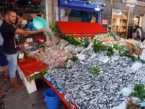 Palamut, tezgahlarda 15 liradan satılıyor