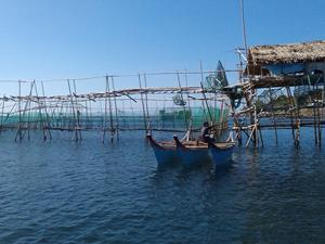 TİKA, Filipinler'de yoksullara balık tutmasını öğretiyor