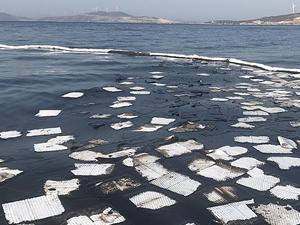 Foça'da petrol sızıntısına ilişkin 22 gemiden numune alındı