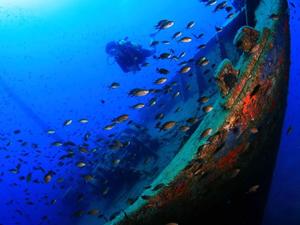 Bodrum'un su altı güzellikleri dünyaya tanıtılacak