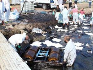 Foça'daki kirliliğe  'M/V Harrıer' gemisi sebep oldu