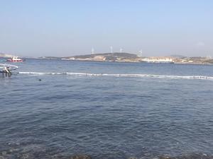 Foça'daki petrol sızıntısına yönelik soruşturma