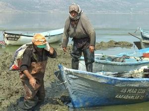 Denizi yok ama Uzak Doğu'ya balık ihraç ediyor