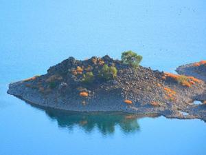 Nemrut'un saklı cenneti: Martı Adası