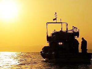 Karadeniz'de balık sezonunun ilk haftası verimli geçti