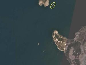 Foça'yı kirleten geminin uydu görüntüleri ortaya çıktı