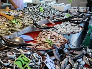 Rize'de tezgahlarda balık bolluğu yaşanıyor