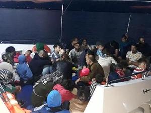 Aydın'da 43 kaçak göçmen yakalandı
