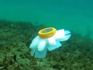 Robot denizanaları, mercan kayalıkları için göreve hazır