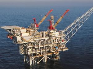 TPAO'dan çok önemli 'Akdeniz' hamlesi