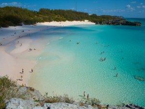 Dünyanın hiçbir yere kıyısı olmayan denizi: Sargasso Denizi...