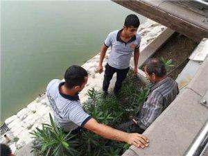 Asi Nehri'ne düşen oltası için canını tehlikeye attı