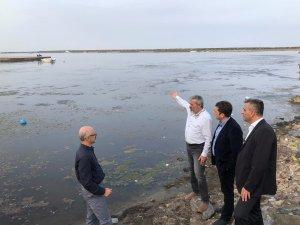 Samsun Kurupelit Yat Limanı'nda ekolojik yıkım