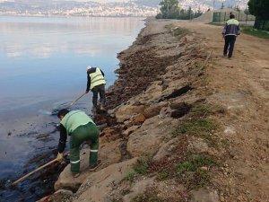 Kocaeli sahillerinin çöpü temizlendi