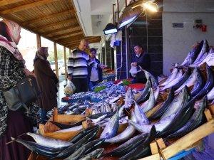 İznik'te Modern Balık Pazarı faaliyete başladı