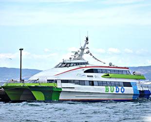 BUDO, Bursa ve İstanbul'daki iskelelerini değiştirecek