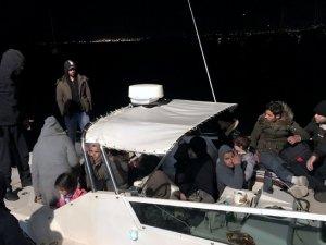 85 kaçak göçmen ve 2 organizatör yakalandı