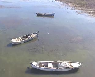 Manisa'daki Marmara Gölü yok olma tehdidi altında