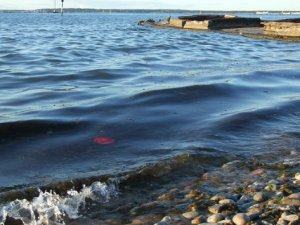 Denize atık bırakanlara ceza 5 kat artıyor
