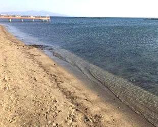 Ayvalık'ta denizden altın çıkarma projesi 'Büyükşehir' engeline takıldı