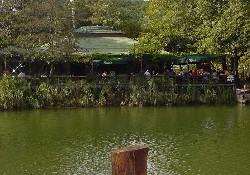 Ağva'da tekneyle balık tutma keyfi