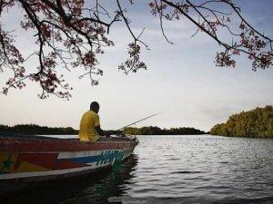 Senegal'de tehlikeli sularda avlanan balıkçılar öldü