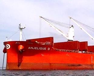 Densan Denizcilik, M/V Anjelique D ve M/V Veronique D gemilerini sattı