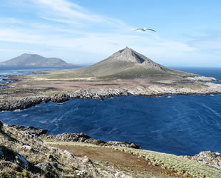 Arjantin, Falkland Adaları için çözüm arıyor