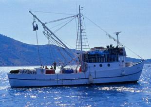 Balıkçıların kısmetine top mermisi çıktı