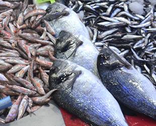 Balık çeşitliği arttı, fiyatlar yükseldi