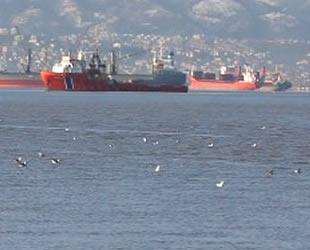Denizi kirleten 460 gemiye 17,5 milyon lira ceza kesildi