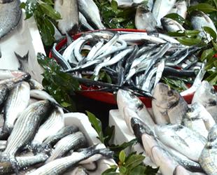Balık tezgahlarındaki çeşitlilik artacak