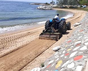 Armutlu sahillerinde bahar temizliği başladı