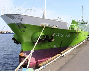Japonya'da Sensho Maru isimli kargo gemisi battı