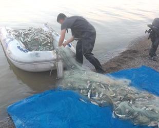 350 metre misina ağı ile 300 kilo balık ele geçirildi