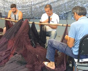 Balıkçılar, yunusların ağlarda açtıkları delikleri dikme mesaisine başladı