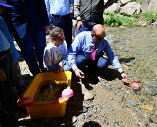 Trabzon'da 14 yılda 16 milyon yavru alabalık orman içi sulara bırakıldı