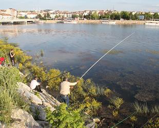 Beyşehir Gölü kıyıları olta avcılarının meskeni oldu