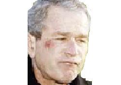Katrina değil 11 Eylül içirdi
