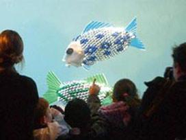 Robot balıklar suya indi